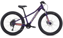 SPECIALIZED RIPROCK COMP 24 GLOSS PLUM 2019 ÅRS MODELL